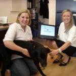 Menzies Group reps meet Poppy - our new team member