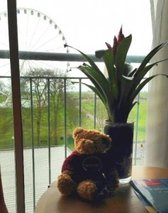 Friend of Evie – Site Visit to Holiday Inn Plymouth